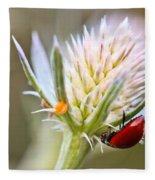 Ladybug On Thistle Fleece Blanket