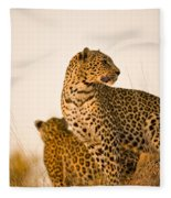 Leopard Panthera Pardus, Arathusa Fleece Blanket