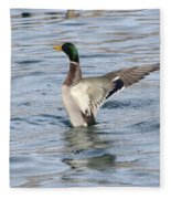 Mallard Duck Showing Off Fleece Blanket