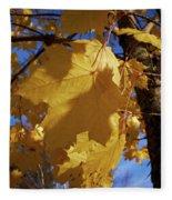 Maple In Fall Fleece Blanket