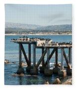 Monterey City Center Fleece Blanket