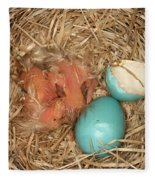Newborn Robin Nestlings Fleece Blanket