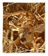 Newly Born Fawn Hiding In A Saskatchewan Field Fleece Blanket