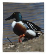 Northern Shoveler Fleece Blanket