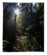 Old Forests At Evo Fleece Blanket