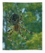 Orb Spider      Summer           Indiana Fleece Blanket