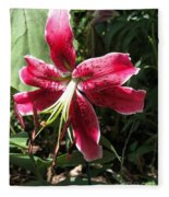 Orienpet Lily Named Scarlet Delight Fleece Blanket