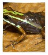 Poison Frog With Eggs Fleece Blanket