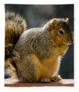 Praying Squirrel  Fleece Blanket