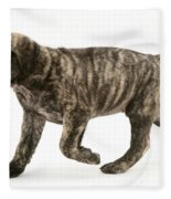 Puppy Trotting Fleece Blanket