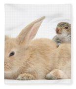 Rabbit And Squirrel Fleece Blanket