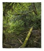 Rain Forest On Vancouver Island Fleece Blanket