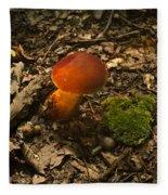 Red Caped Mushroom 3 Fleece Blanket