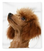 Red Toy Poodle Fleece Blanket