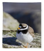 Ringed Plover Fleece Blanket
