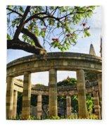 Rotunda Of Illustrious Jalisciences And Guadalajara Cathedral Fleece Blanket