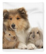 Rough Collie Pup With Two Young Rabbits Fleece Blanket