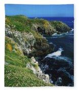 Saltee Islands, Co Wexford, Ireland Fleece Blanket