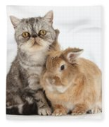 Silver Tabby Cat And Lionhead-cross Fleece Blanket
