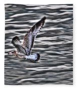 Soaring Gull Fleece Blanket