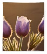 Spring Time Crocus Flower Fleece Blanket