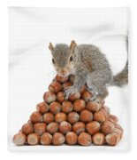 Squirrel And Nut Pyramid Fleece Blanket
