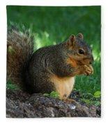 Squirrel Eating Fleece Blanket