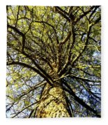 Stalwart Pine Tree Fleece Blanket