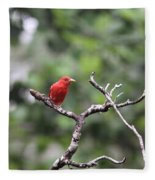 Summer Tanager Fleece Blanket