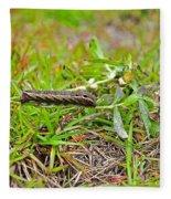 Tersa Sphinx Caterpillar Fleece Blanket