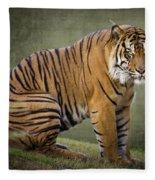 The Sumatran Tiger  Fleece Blanket