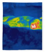Thermogram Of A Tiger Fleece Blanket
