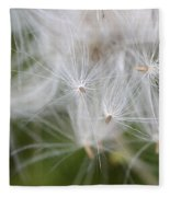 Thistle Seeds Fleece Blanket