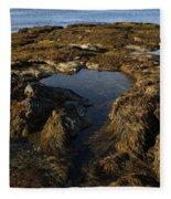 Tidepool In Maine Fleece Blanket