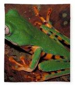 Tiger-striped Monkey Frog Fleece Blanket