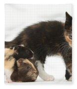 Tortoiseshell Kitten With Baby Fleece Blanket