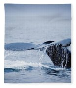 Whales Fluke Fleece Blanket