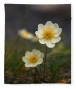 White Dryas Fleece Blanket