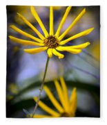 Wild Swamp Daisy Fleece Blanket