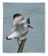 Wing Test Fleece Blanket