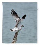 Wings Up Fleece Blanket