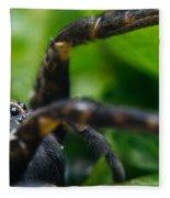 Wolf Spider And Babies 2 Fleece Blanket