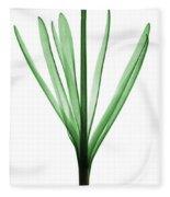 X-ray Of Hyacinth Fleece Blanket