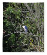 Yellow-crowned Night-heron Fleece Blanket