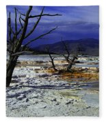 Yellowstone National Park 6 Fleece Blanket