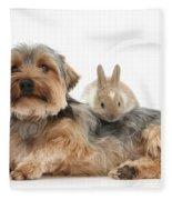 Yorkshire Terrier Dog And Baby Rabbit Fleece Blanket