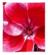 Zonal Geranium Named Candy Fantasy Kiss Fleece Blanket