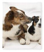 Dogs Fleece Blanket