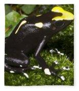 Dyeing Poison Frog Fleece Blanket