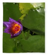 Waterlily Opening Part Of A Series Fleece Blanket